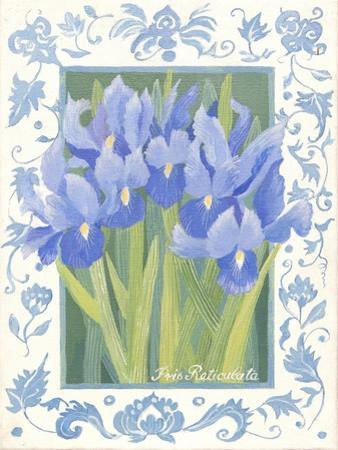 Blue Iris by Jennifer Abbott