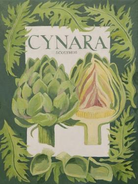 Cynara by Jennifer Abbott