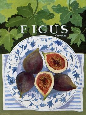 Fieus (Figs), 2014 by Jennifer Abbott