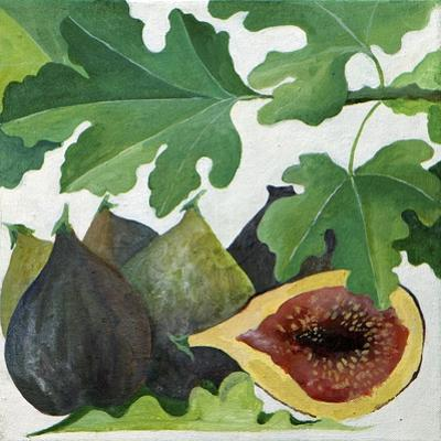 Figs, 2013 by Jennifer Abbott