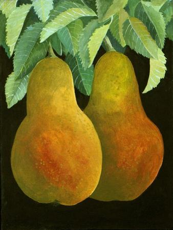 Pears, 2014 by Jennifer Abbott