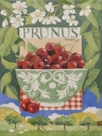 Prunus avium by Jennifer Abbott
