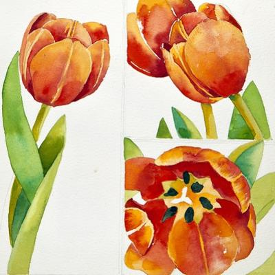 Three Tulip Studies in a Sure, 2013 by Jennifer Abbott