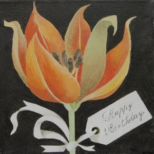 Tulip, Happy Birthday by Jennifer Abbott