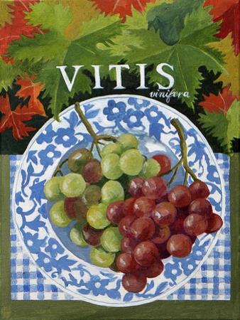Vitus (Grapes), 2014 by Jennifer Abbott