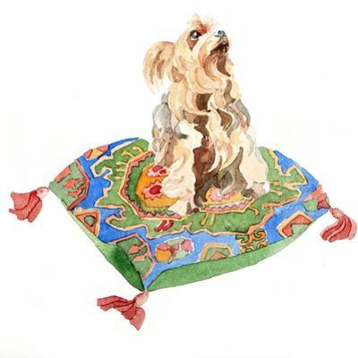 Yorkshire Terrier, 2012 by Jennifer Abbott