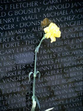 Vietnam War Memorial, Washington DC by Jennifer Broadus