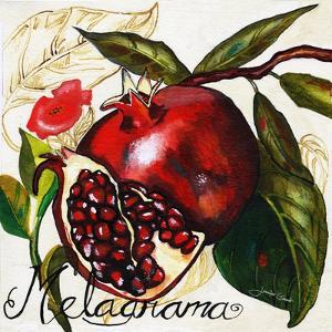 Tuscan Sun Pomegranate by Jennifer Garant