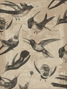 Bird Pattern I by Jennifer Goldberger