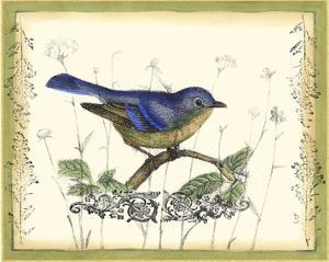 Bird & Wildflowers II by Jennifer Goldberger