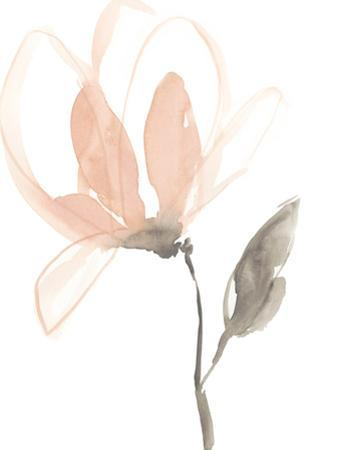Blush Petals I by Jennifer Goldberger