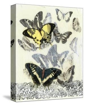 Butterfly Habitat I by Jennifer Goldberger