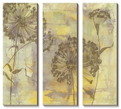 Dandelion Dance by Jennifer Goldberger