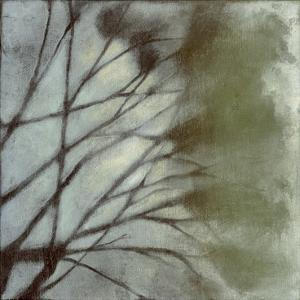 Diffuse Branches II by Jennifer Goldberger