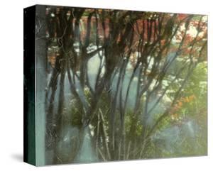 Dream Sequence IV by Jennifer Goldberger