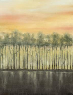 Dusk in Summer by Jennifer Goldberger