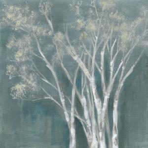 Ethereal Birches I by Jennifer Goldberger