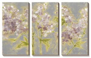 Ethereal Flowers by Jennifer Goldberger