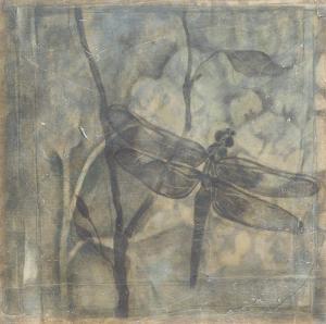 Ethereal Wings II by Jennifer Goldberger