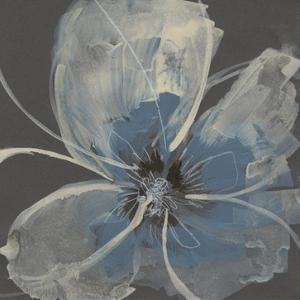 Expressive Petals II by Jennifer Goldberger