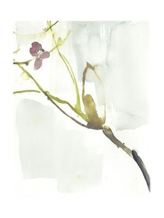First Blooms VI by Jennifer Goldberger