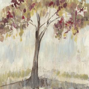 First of Fall II by Jennifer Goldberger