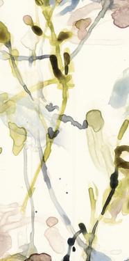 Flower Drip Triptych II by Jennifer Goldberger