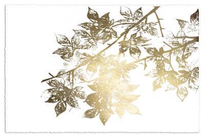 Gold Foil Maple II on White by Jennifer Goldberger
