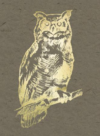 Gold Foil Owl II on Banana Clay by Jennifer Goldberger