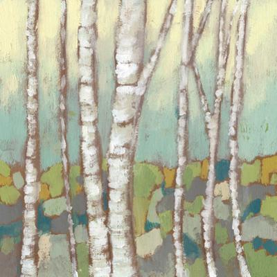 Kaleidoscope Birches II by Jennifer Goldberger
