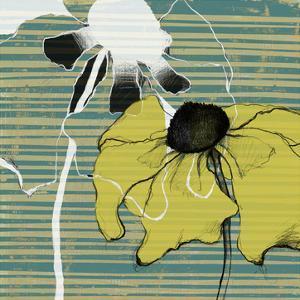 Layered Poppies II by Jennifer Goldberger
