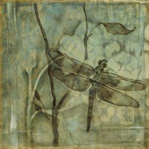 Non-Embellished Ethereal Wings II by Jennifer Goldberger