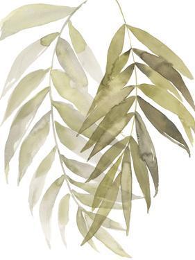 Palm Embrace I by Jennifer Goldberger