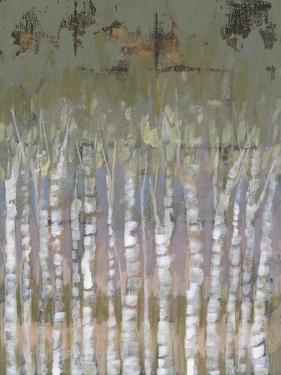Pastel Birchline II by Jennifer Goldberger