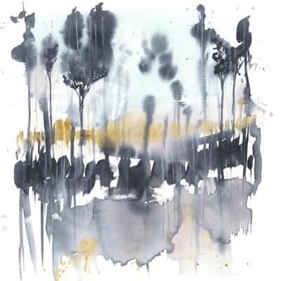 Paynes Reflection II by Jennifer Goldberger