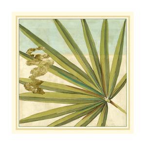 Peacock Palm V by Jennifer Goldberger