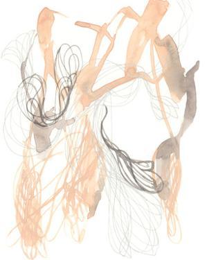 Petal Matrix I by Jennifer Goldberger