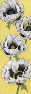 Poppy Vine I by Jennifer Goldberger