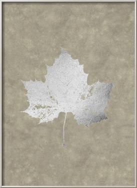 Silver Foil Leaf II on Lichen Wash by Jennifer Goldberger