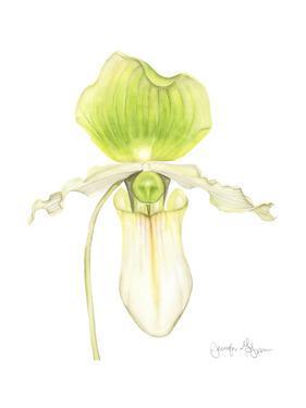 Small Orchid Beauty IV by Jennifer Goldberger