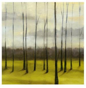 Sunlit Treeline I by Jennifer Goldberger
