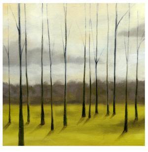 Sunlit Treeline II by Jennifer Goldberger