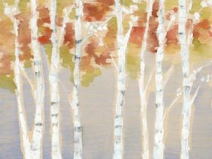 Swaying Birches I by Jennifer Goldberger