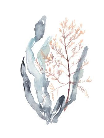 Sweet Seaweed II by Jennifer Goldberger