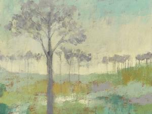 Tree Stand II by Jennifer Goldberger
