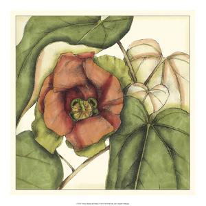 Tropical Blooms and Foliage IV by Jennifer Goldberger