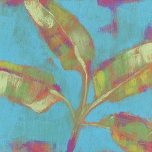 Tropical Palm Pop II by Jennifer Goldberger