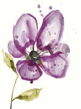 Violet Petals I by Jennifer Goldberger