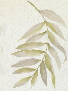 Whispering Palm I by Jennifer Goldberger