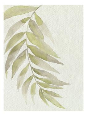Whispering Palm II by Jennifer Goldberger